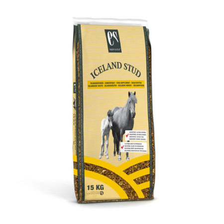 IcelandStud_Front_NY2